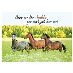 Carte Postale Chocolat Cheval