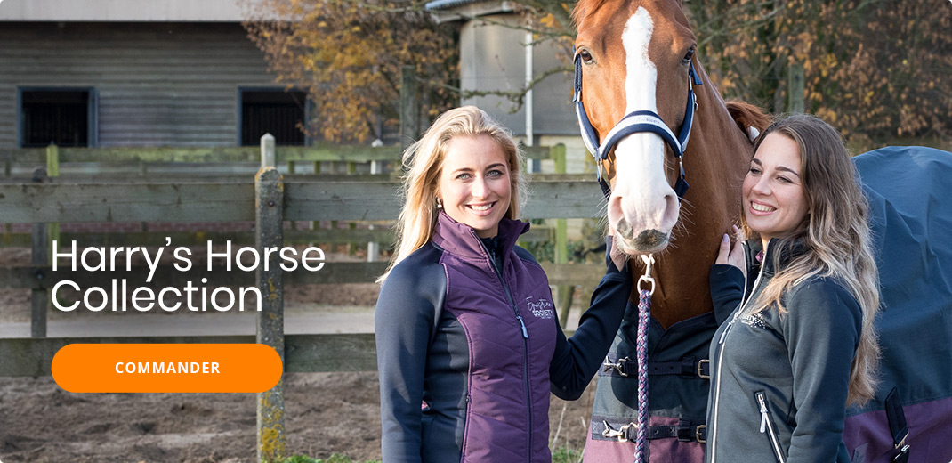 Harry's Horse Winter Collection